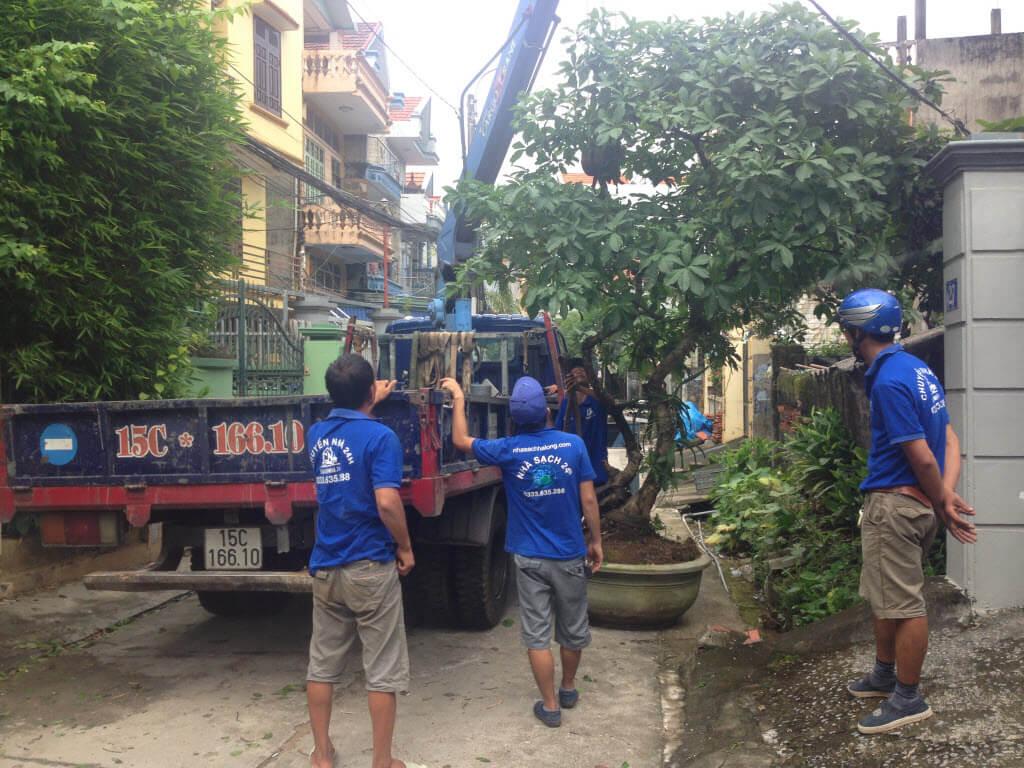 Dịch vụ vận chuyển cây cảnh
